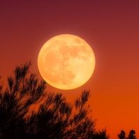 Full Moon in Aries October 1, 2020
