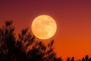 Aries Full Moon October 1, 2020 Astrology Horoscope Harvest Moon