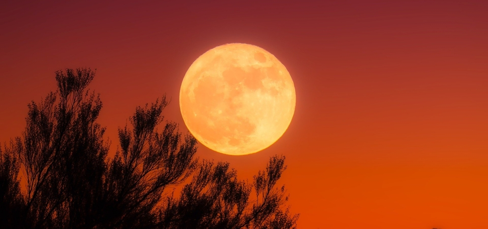 Aries Full Moon October 1, 2020 Astrology Horoscope Harvest Moon